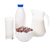 Delicious dairy products. Stock Image