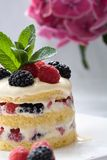 Delicious dessert Royalty Free Stock Image