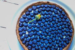 Delicious dessert blueberry tart with fresh berries, sweet tasty cheesecake, berry, bog bilberry, whortleberry pie. French cuisine Royalty Free Stock Photography