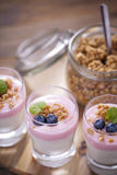 Delicious dessert, flakes flooded in two flavors yogurt with blu Stock Photos