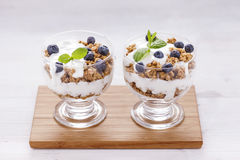 Delicious dessert, flakes flooded in two flavors yogurt with blu Stock Images