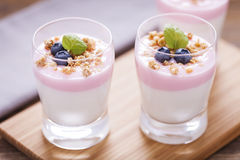 Delicious dessert, flakes flooded in two flavors yogurt with blu Royalty Free Stock Photos
