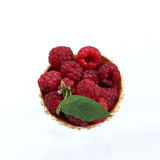Delicious dessert of fresh berries Royalty Free Stock Photography