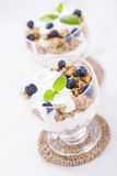Delicious dessert with fruits and flakes Stock Photography