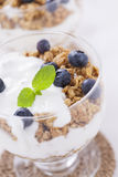 Delicious dessert with fruits and flakes Royalty Free Stock Photography