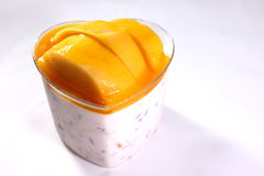 Delicious dessert with mango mousse Royalty Free Stock Photos