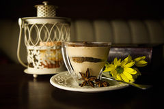 Delicious dessert tiramisu Stock Photos