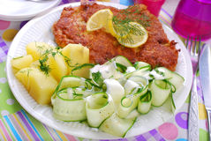 Delicious dinner with pork chop and cucumber salad Royalty Free Stock Images