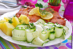 Delicious dinner with pork chop and cucumber salad Royalty Free Stock Image