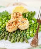 A delicious dinner of roasted scallops and asparagus Stock Images