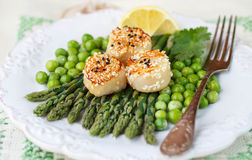 A delicious dinner of roasted scallops and asparagus Stock Image