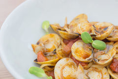 Delicious dish of spicy pasta with shellfish and Sunflower sprou Stock Photography