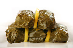 Delicious dolmas Stock Image