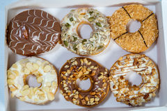 Delicious Donuts in a Box Royalty Free Stock Images