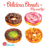 Delicious donuts  in watercolor vector illustration  set Stock Images