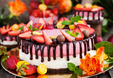 Delicious double cheesecake decorated with chocolate and fresh s Royalty Free Stock Images