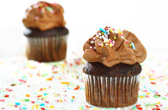 Delicious double-chocolate cupcakes Stock Photos