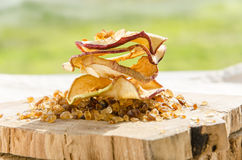Delicious dried apples. Sof light on delicious dried apples Stock Photos