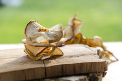 Delicious dried apples. Sof light on delicious dried apples Royalty Free Stock Image