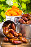 Delicious dried apricots and dates Royalty Free Stock Photos