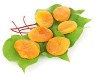 Delicious dried apricots on green leaves Royalty Free Stock Images