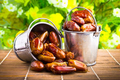 Delicious dried dates. In tin pail stock photo