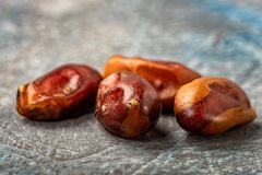 Delicious dried dates, a favorite dish of many gourmets stock image