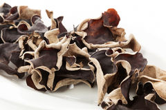 Jew's ear background. Stock Photo