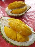 The delicious durian the king of the fruits royalty free stock photo