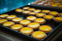 Delicious egg tart on tray Stock Images