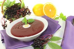 Delicious elderberries soup Stock Photos
