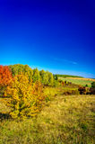 Delicious, fabulous fall over fields. Stock Image
