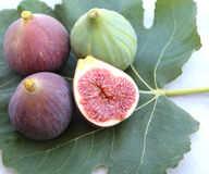 Delicious figs on a fig leaf. Stock Photos