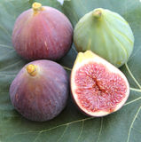 Delicious figs on a fig leaf, close up. Stock Photos