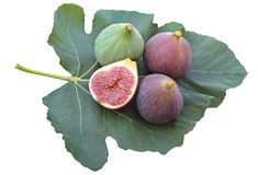 Delicious figs on a fig leaf  on white background Stock Photo
