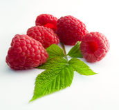 Delicious first class fresh raspberries Stock Images