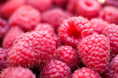 Delicious first class fresh raspberries close up texture - backg. Round Royalty Free Stock Image