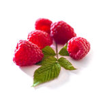 Delicious first class fresh raspberries isolated on white background. Extra Royalty Free Stock Photos