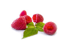 Delicious first class fresh raspberries isolated on white background. Extra Royalty Free Stock Image