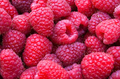 Delicious first class fresh raspberries - texture and background Stock Photos