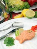 Delicious fish. Fillet on the white plate Stock Photography