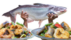 Delicious fish curry Royalty Free Stock Images