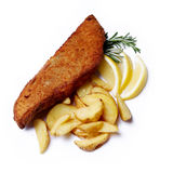 Delicious fish fillet Stock Image