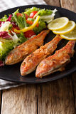 Delicious fish red mullet with fresh mix vegetable salad close-u Stock Images