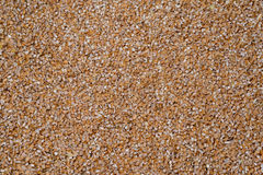 Delicious food background of brown buckwheat Royalty Free Stock Image