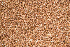 Delicious food background of brown buckwheat Stock Images