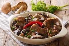 Delicious food: beef stew with wild mushrooms in spicy sauce clo Royalty Free Stock Images