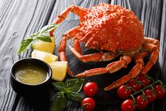 Delicious food: boiled spider crab with tomato, lemon and melted. Butter close-up on a black board. Horizontal. restaurant setting royalty free stock images