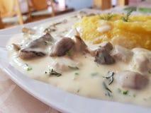 Mushroom stie with polenta stock photos