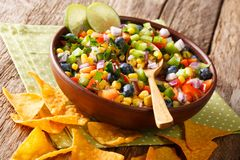 Delicious food: salsa from corn, blueberries, pepper, herbs and. Onions close-up in a bowl and nachos chips on the table. horizontal royalty free stock images